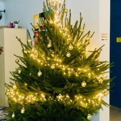 Sapin de Noel 2019 Ecole Mercier Saint-Paul