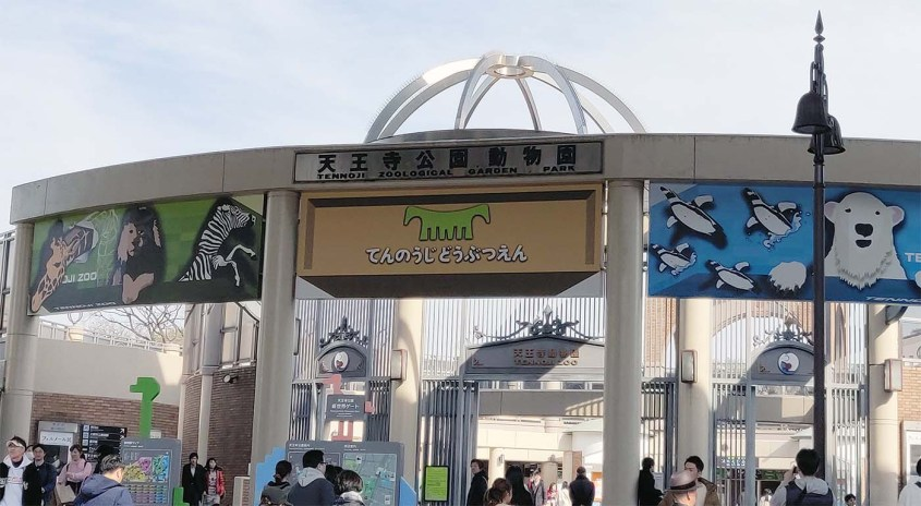 Zoo de Tennoji à Osaka : traiter des animaux comme cela ne devrait pas être possible.