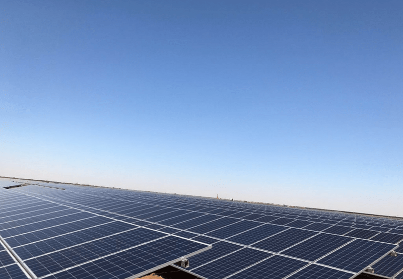 Rewa Solar Park Projects