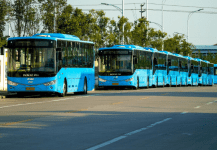 NTPC to Procure 250 Electric Buses for Three Cities in Madhya Pradesh