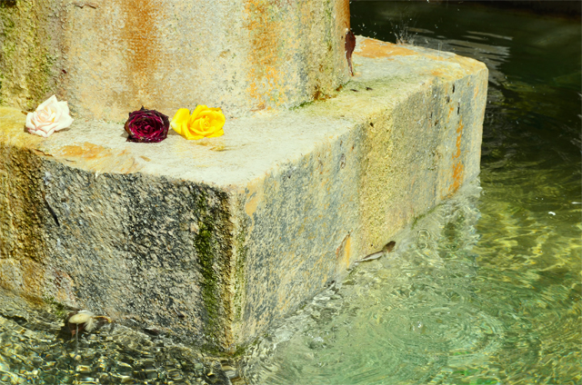 grasse-parfums-molinard-fragonard-galimard-fontaine