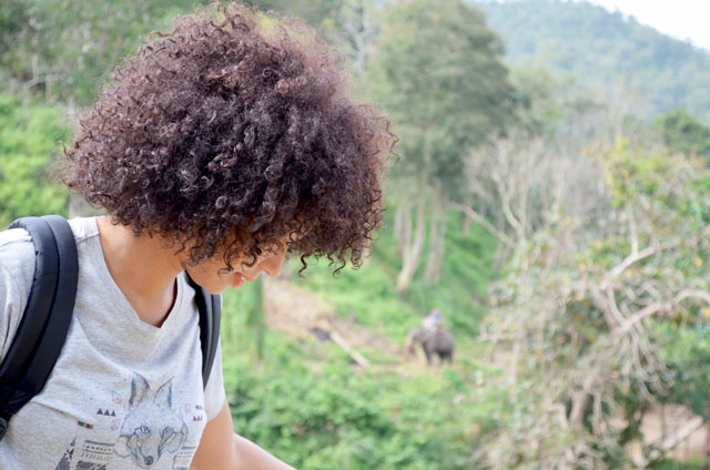 mercredie-blog-mode-voyage-thailande-elephants-chiang-mai