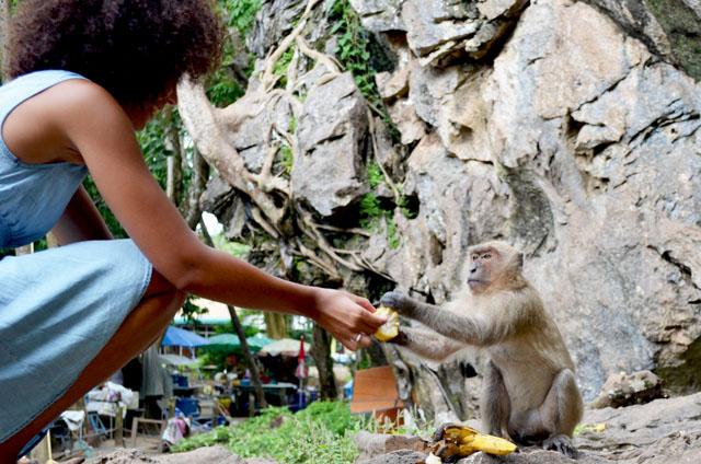 mercredie-blog-mode-voyage-thailande-priscilla-monkey-singe-mange-mais