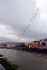 2012. The river Arno. Florence, Italy.