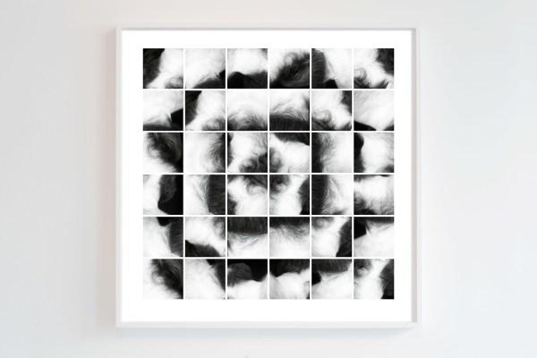 Corsage (2014) by Chris Komater. Digital C-print, 30 x 30
