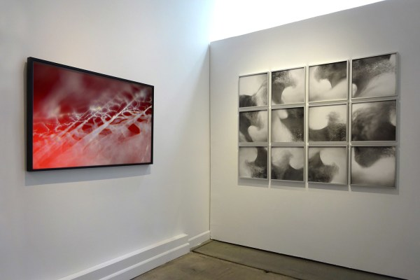 Installation view Scylla & Charybdis (2015) by Chris Komater. L-R Untitled (Spider Web #605), digital C-print, 30 x 45; Swell, framed gelatin silver prints, 47 x 63 installed