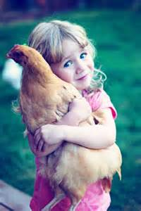chicken being hugged by girl