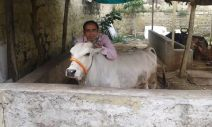 Cow and his loving owner, my friend Sivan Kumar near Hyderabad, India