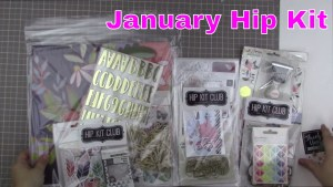 Kit Share: Hip Kit January 2017