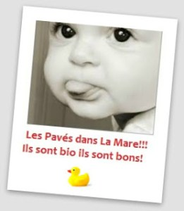 vignette_les_pav_s_dans_la_mare
