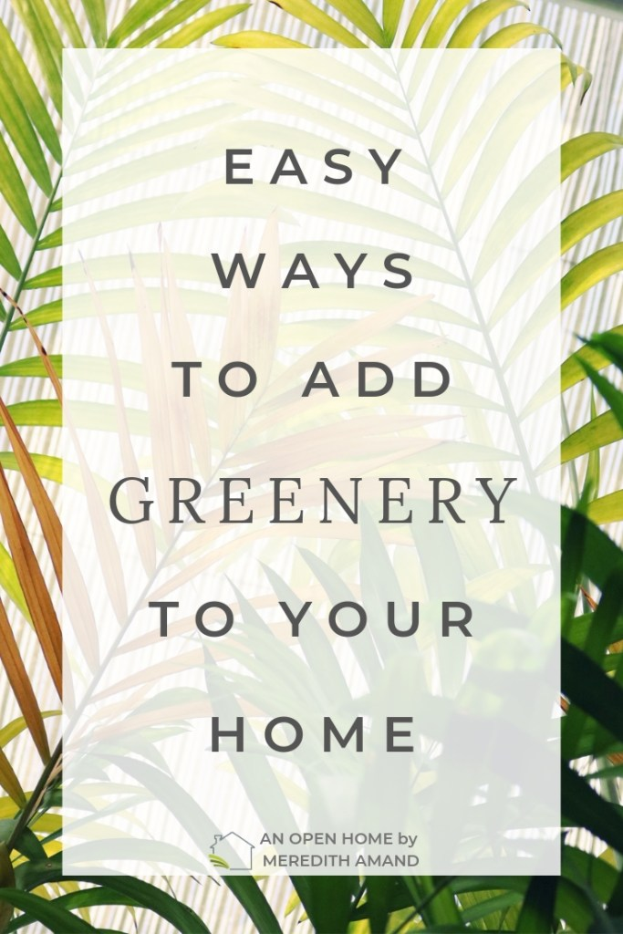 Easy Ways to Add Greenery to Your Home - Bring in some plants for better mental and physical health | MeredithAmand.com