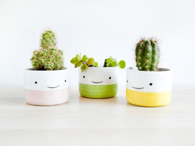 Cute planters gift guide for gardeners MeredithAmand.com