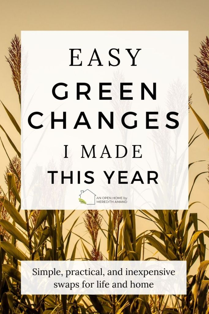 Easy Green Changes I Made This Year - A reflection of simple practical and inexpensive changes our home has made in 2019 MeredithAmand.com