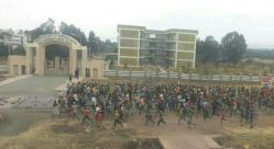 Transportation to Wolliso, other towns in southwestern Ethiopia completely shut down by protesters