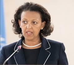 Ethiopia on path of reforms amidst challenges – Ethiopian Ambassador to Belgium