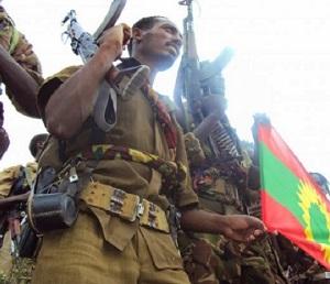 At least 11 people  killed by rebel OLF in east Wellega, Ethiopia's Oromia Region