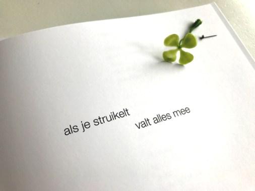 struikelt_klaver