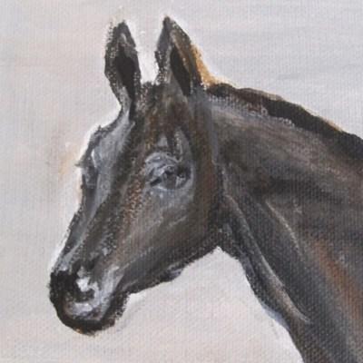 Cheval noir à la couverture détail