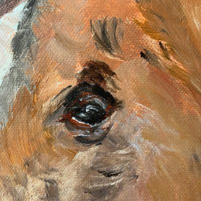 Peinture d'un jeune étalon - détail - Mérèse