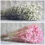 Gypso blanc et rose