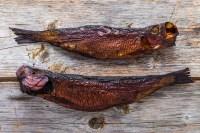 Canadian Saltfish, Cod, Pollock, Hake, Cusk, Ling ...