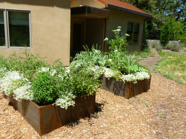 raised steel planters