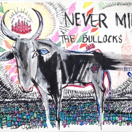 Never-mind-the-bullocks