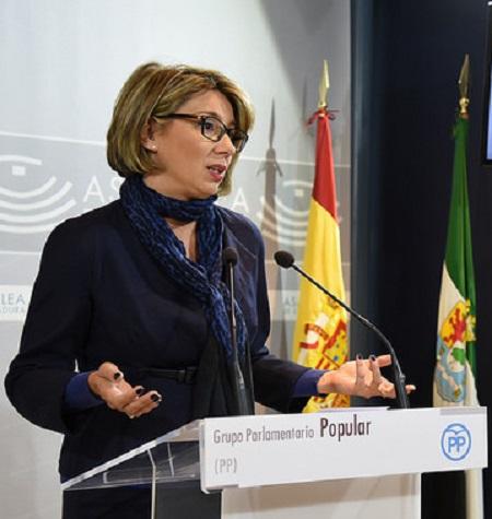 El PP pide información detallada sobre los presupuestos 2018 a la Junta