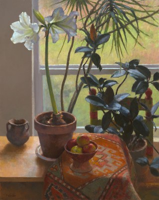 Jim McVicker, White Amaryllis, North Window, 30x24, oil on linen.