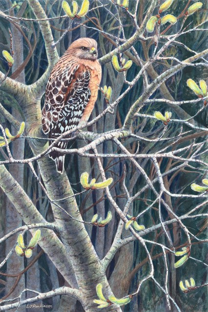 Among the Willows – by Linda Parkinson, Limited Edition print from original watercolor.