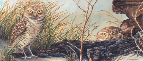 Who Invited You – by Linda Parkinson, Limited Edition print from original watercolor.