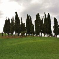 Val D'Orcia (parte 1)