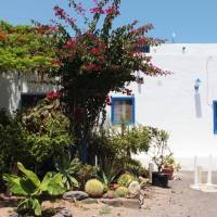 Le 9 cose da fare a Fuerteventura... + 2