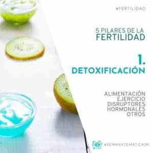 1. Detoxificación