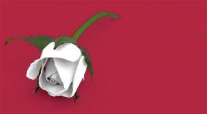 Ausencia de menstruación - amenorrea