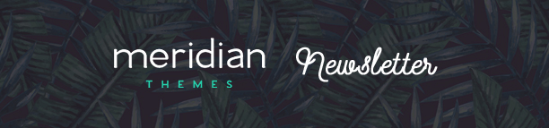 The Traveler - Responsive WordPress Blog Theme - 10