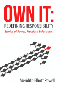 Own It Book Cover with lines