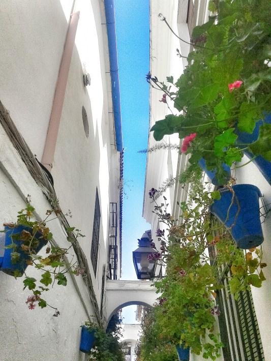 Cordova - Callejon de las Flores