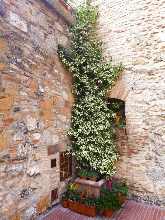 San Gimignano - 12