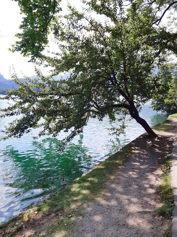 Lago di Bled - 23.jpeg
