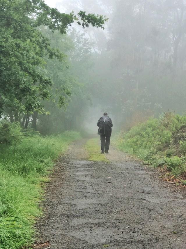 Cammino Inglese Ferrol Santiago -