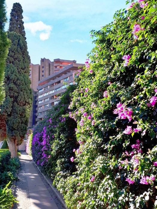 Giardini di Monforte - Valencia -7