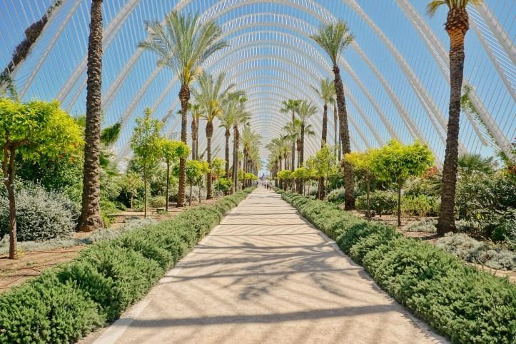 Valencia - Città delle Arti e delle Scienze - 33