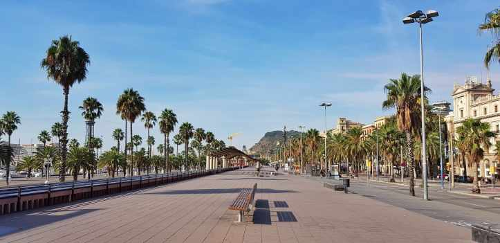 Barcelonera-2