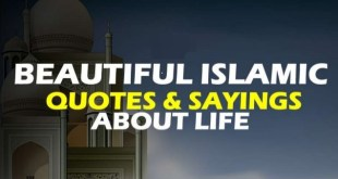 Muslim Quotes Archives - Meri Web