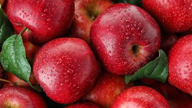 Photo of A Powerhouse of Nutrients & Amazing Health Benefits of Apple