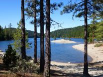 Sugarpine Res