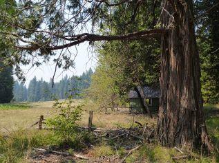 Elliott Ranch cabin