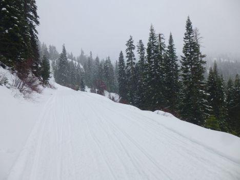 Barkerpass-rd-snowing