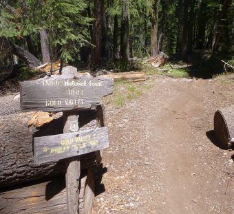 Pauley Creek and Butcher Ranch split